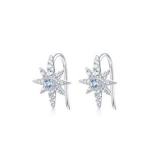 Sky Blue Toapz/Garnet/Crystal Star Silver Earrings